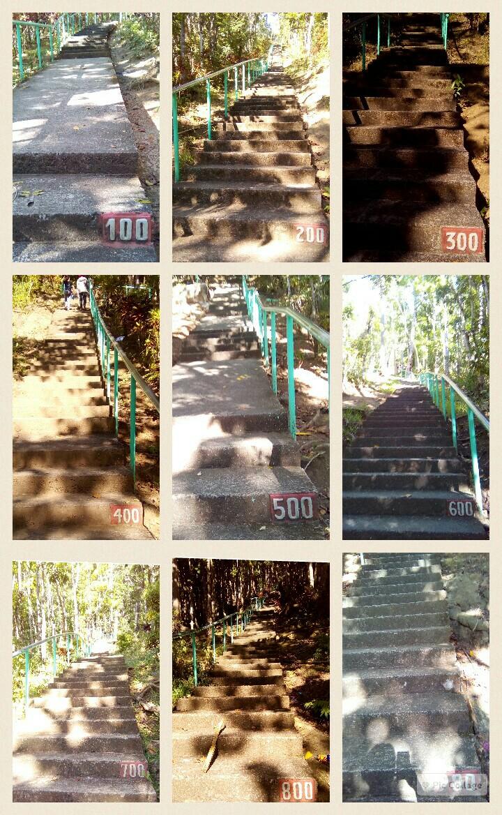 collage-2016-01-17-09_06_51.jpg.jpg